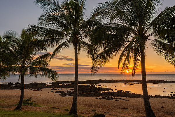 Sharks Cove Sunset 4 - Oahu Hawaii Print by Brian Harig