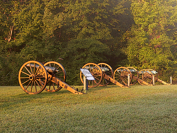 Shiloh Cannons Print by David Bearden