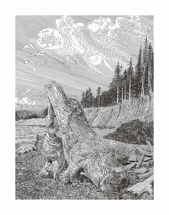 Shipwrecked Print by Jack Pumphrey