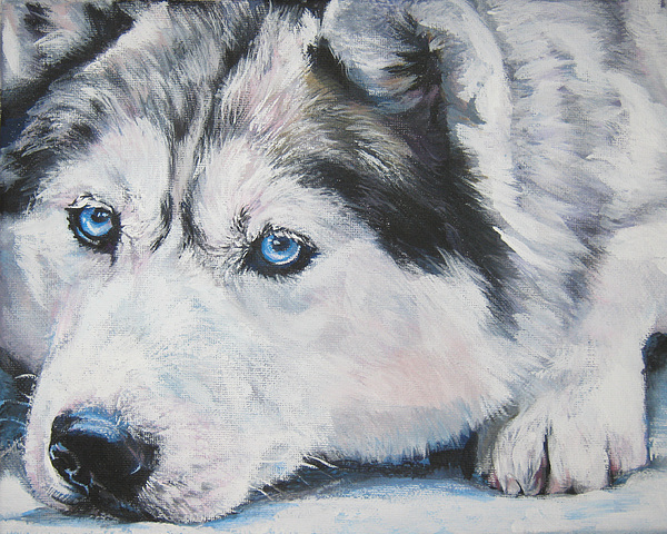 Siberian Husky Up Close Print by L A Shepard