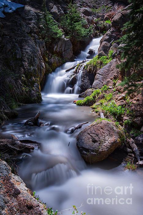Dianne Phelps - Sierra Nevada Waterfall
