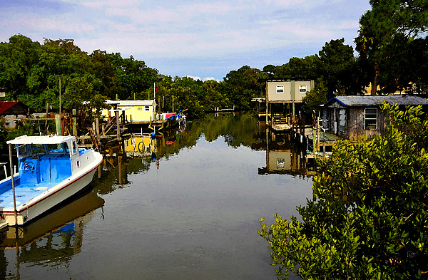 Sleepy Cedar Key Florida Print by David Lee Thompson