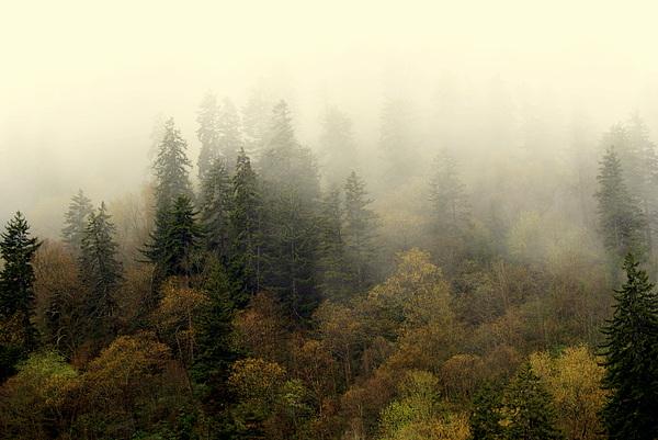 Smoky Mount Horizontal Print by Marty Koch