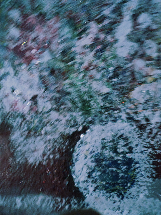 Snowglobe Gone Wild Blue Print by Anne-Elizabeth Whiteway