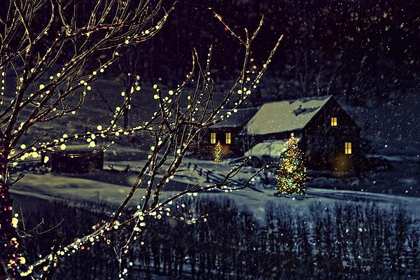 Snowy Winter Scene Of A Cabin In Distance Print by Sandra Cunningham