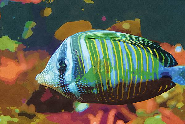 Something Fishy Print by Deborah MacQuarrie