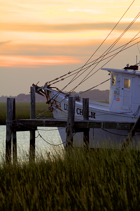 Southern Shrimp Boat Sunset Print by Dustin K Ryan