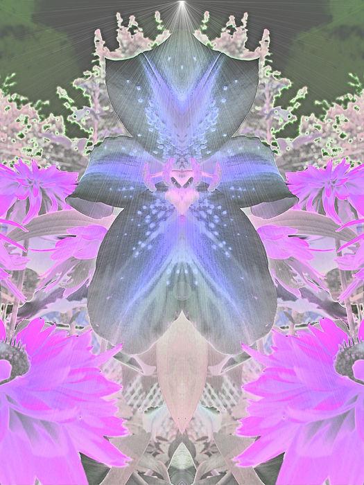 Space Lily Print by Roxy Riou