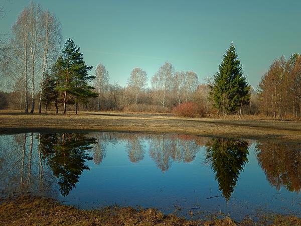 Lana Art - Spring Reflections