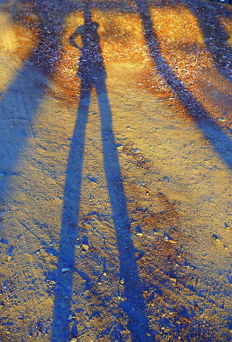 Summertime Legs Print by JoAnn SkyWatcher