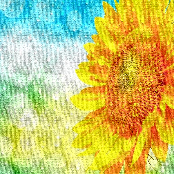 Sunshower Colourpop 203605 Gt Wibma Com Ontwerp