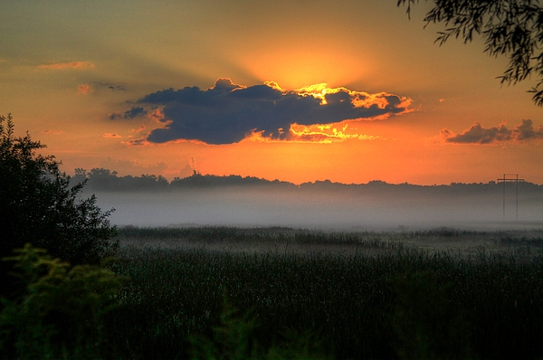 Sunrise In The Swamp-3 Print by Robert Pearson