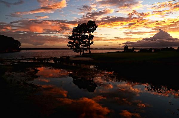 Judy Vincent - Sunset Reflection