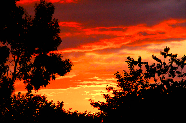 Sunset Sky Print by Duke Brito
