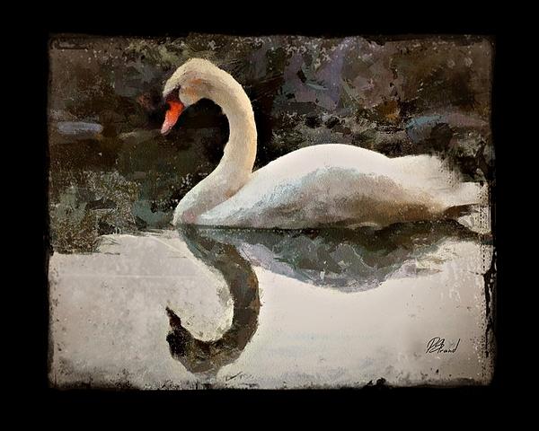 Patricia Strand - Swan