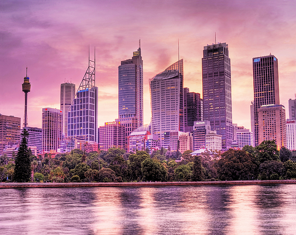 Sydney Tower Skyline At Sunset Print by Chris Smith