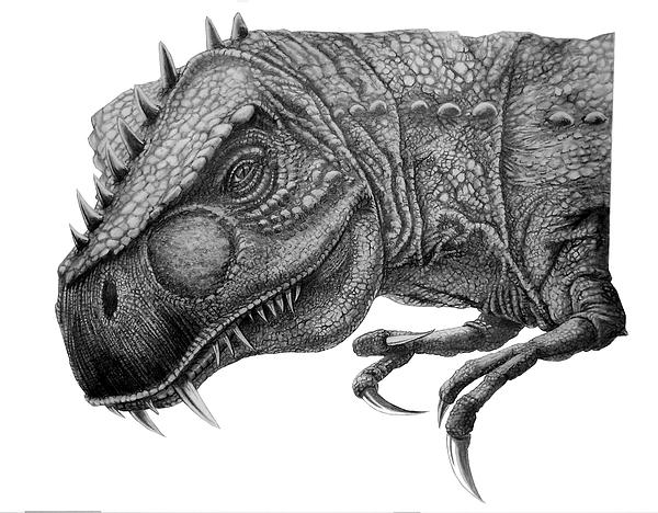 T-rex Print by Murphy Elliott