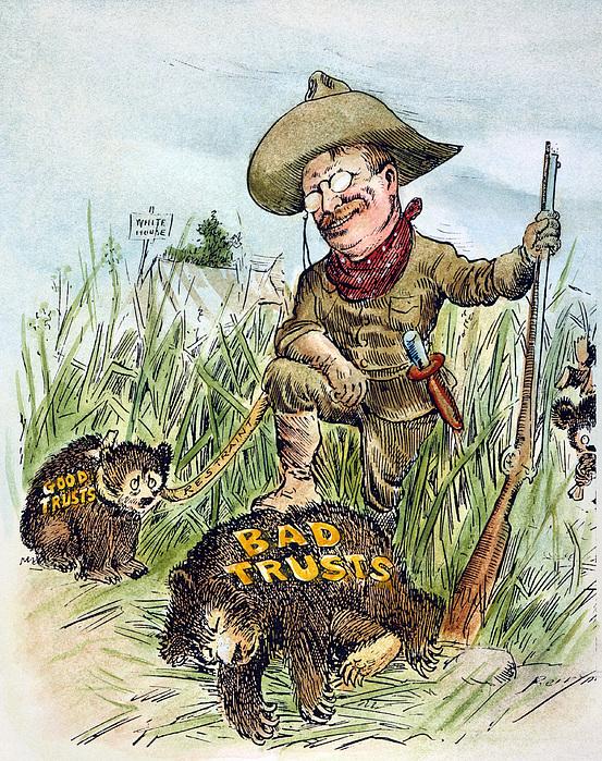 T. Roosevelt Cartoon, 1909 Print by Granger