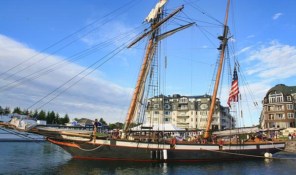 Pat Cook - Tall Ship Lynx