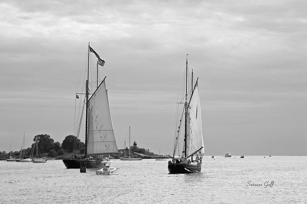 Tall Ships Sailing I In Black And White Print by Suzanne Gaff