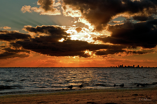Tampa Bay Sunset Print by Christopher Holmes