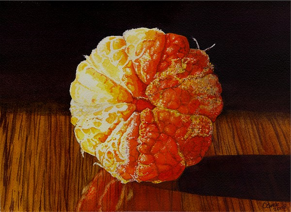Tangerine Print by Catherine G McElroy