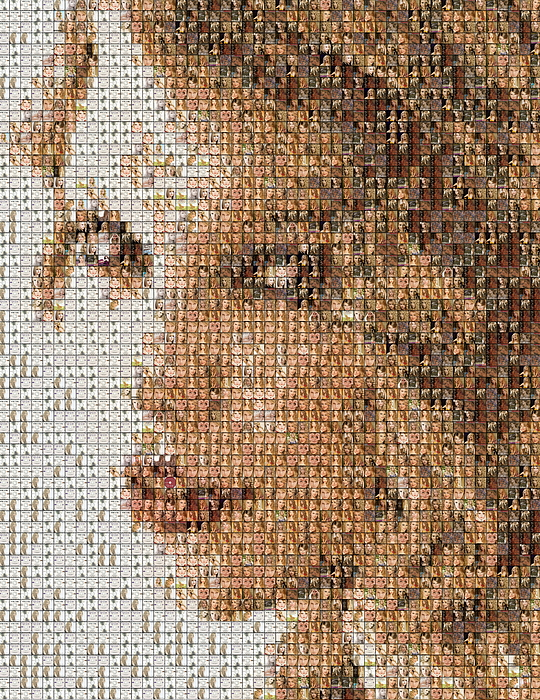 Taylor Swift Mosaic Print by Paul Van Scott