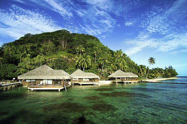 Te Tiare Resort Print by David Cornwell/First Light Pictures, Inc - Printscapes
