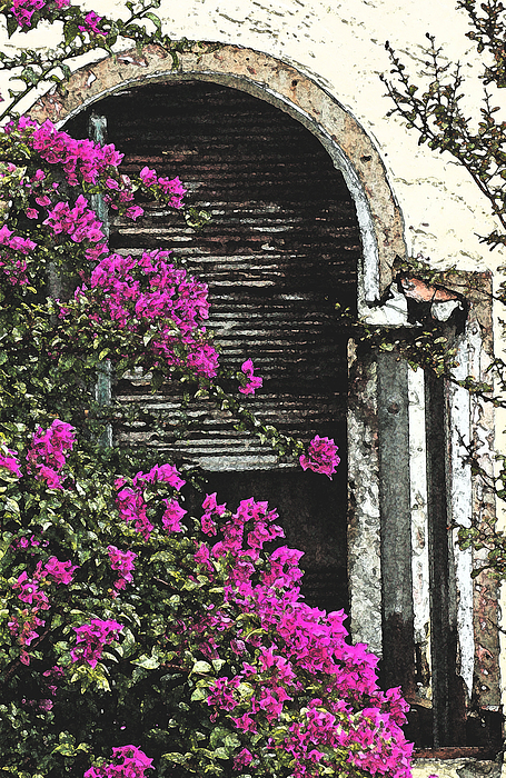 The Forgotten Window Print by Anahi DeCanio