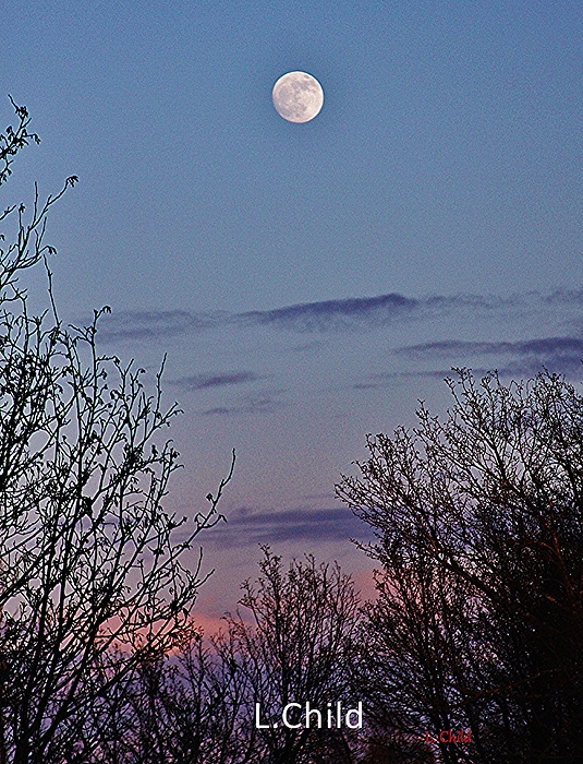 Lori Mahaffey - The Full Moon