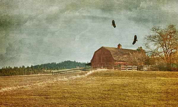 The Homecoming Print by Reflective Moment Photography And Digital Art Images