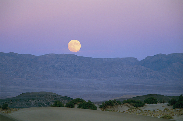 The Moon Rises Over The Amargosa Print by Marc Moritsch