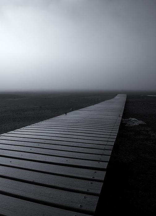 The Path Print by Mike  Dawson