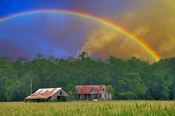 The Promise Print by Jan Amiss Photography