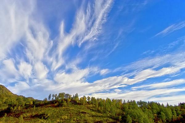 The Skies Print by Heiko Koehrer-Wagner
