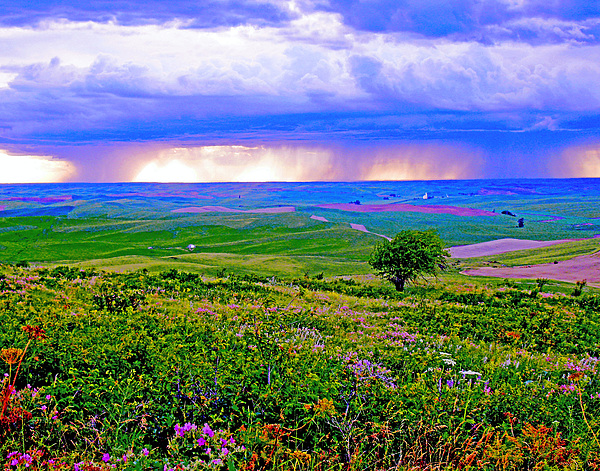 Thunderstorm Over The Palouse Print by Margaret Hood