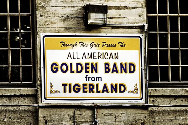 Tigerland Band Print by Scott Pellegrin