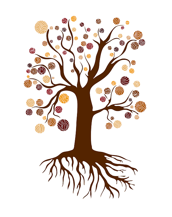 Tree Print by Frank Tschakert