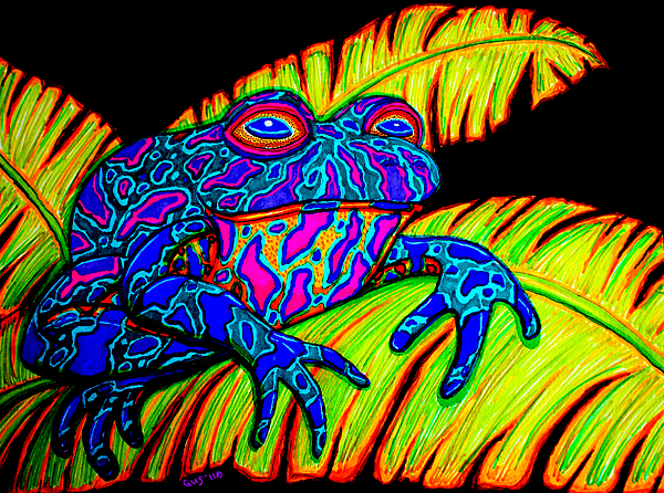 Tropical Frog Print by Nick Gustafson