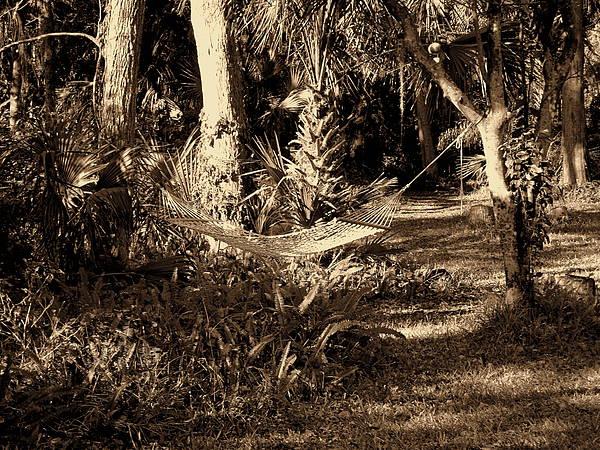 Tropical Hammock Print by Susanne Van Hulst
