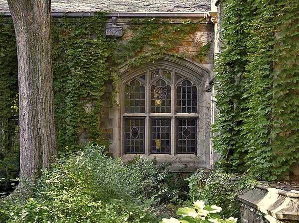 U Of M Halls Of Ivy Print by Richard Gregurich