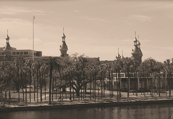 University Of Tampa With Old World Framing Print by Carol Groenen