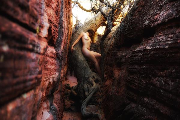 Sydney Riccella Kitzmiller - Untamed Youth