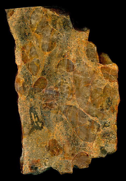 Uranium Ore Conglomerate Print by Ted Kinsman