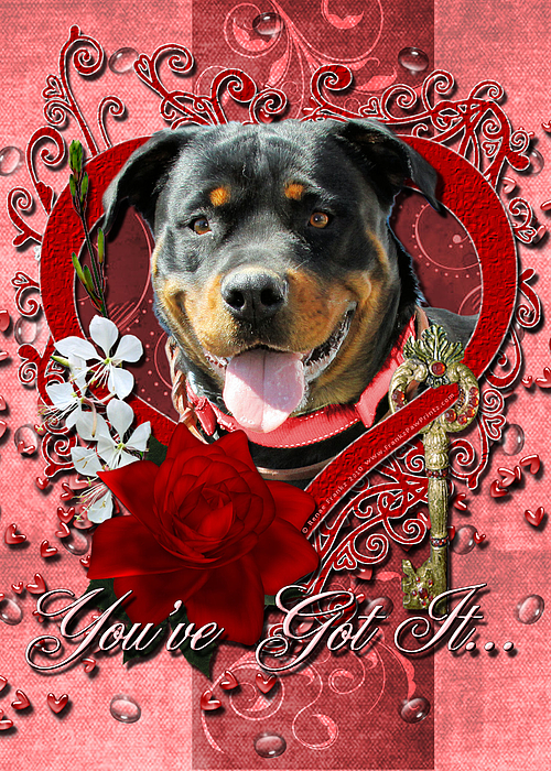 Valentines - Key To My Heart Rottweiler Print by Renae Laughner