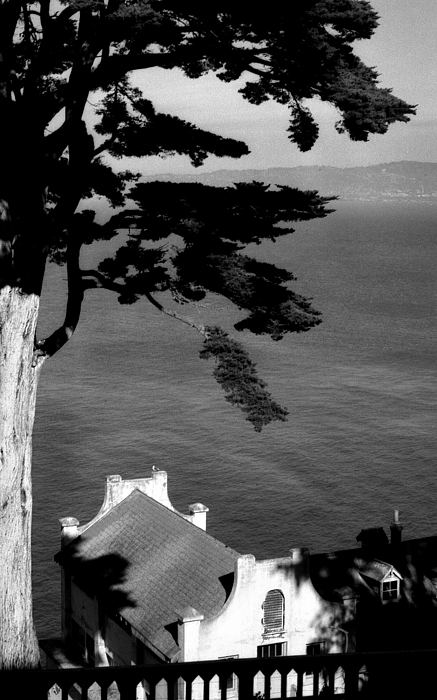View From Alcatraz Print by Todd Fox