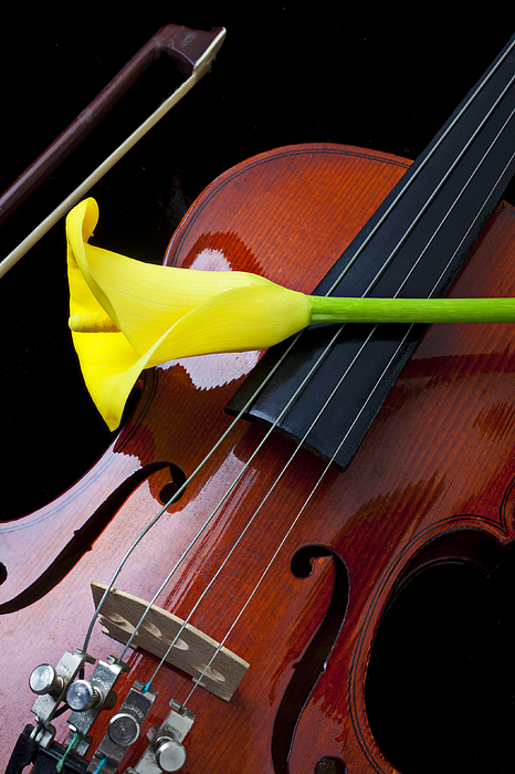 Violin With Yellow Calla Lily Print by Garry Gay
