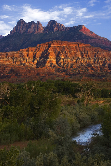 Virgin River Near Zion National Park Print by Utah Images
