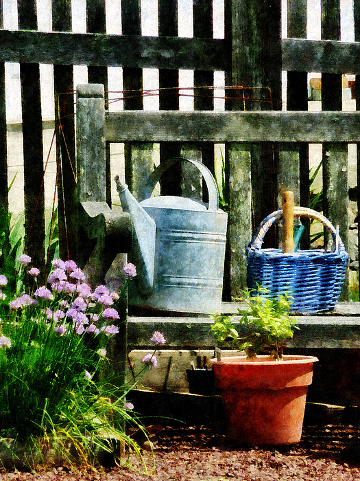 Watering Can And Blue Basket Print by Susan Savad