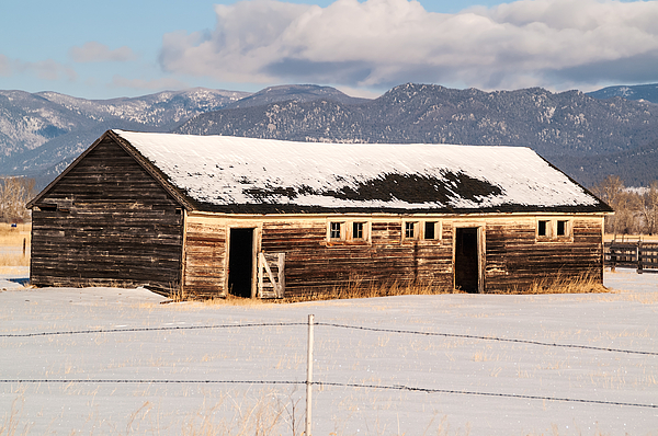 Weathered Barn Print by Sue Smith